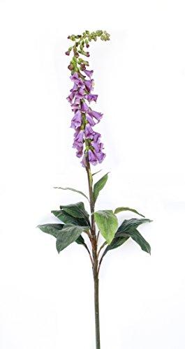 Foxglove-67-Inch-High-Lavender