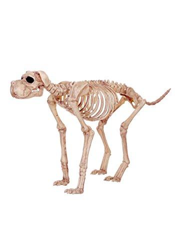 Skeleton Dog Decoration (Crazy Bonez Skeleton Dog - Bruiser Bonez)
