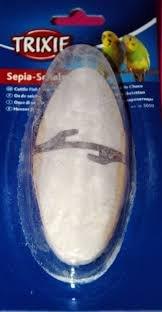 Hueso de jibia (sepia) con enganche para pico de pájaros
