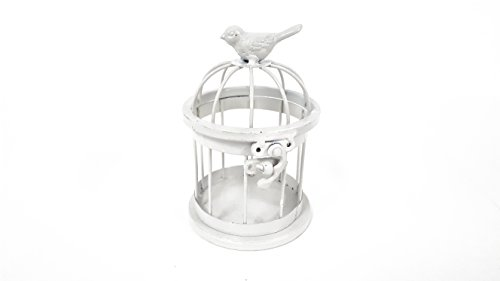White Small Iron Bird Cage with Bird on (Small Decorative Bird Cages)