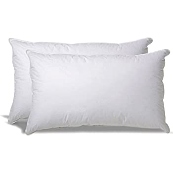 Amazon Com Superior White Down Alternative Pillow 2 Pack