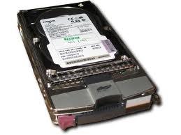 HP 364622-B22 300gb 10k Eva Disk Drive 364622-B21? 364622-B23
