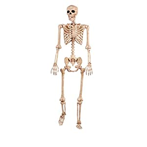 Pose-N-Stay Skeleton