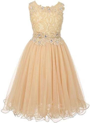 Big Girls' See Through Waistline Lace Pageant Bridesmaid Flowers Girls Dresses Champagne Size - Dress Embroidered Floral Organza