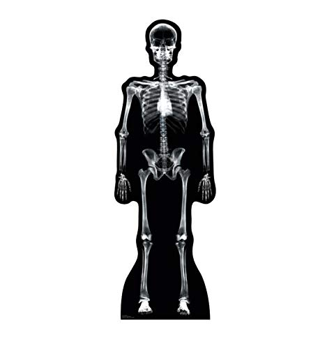 Advanced Graphics X-Ray Skeleton Life Size Cardboard Cutout Standup