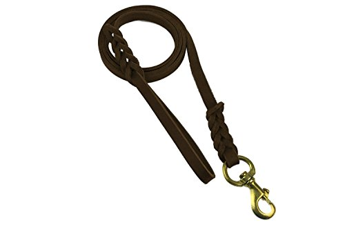 Premier-6ft-Leather-Dog-Training-Leash-Made-from-Leather-and-is-a-Great-Option-for-Hunting-Dogs-or-General-Obedience-in-the-Backyard
