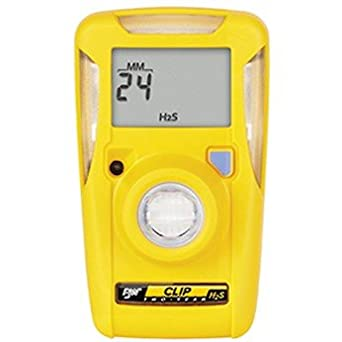 BW Technologies BW Clip Single Gas Detector, CO (Carbon Monoxide), 2-Year: Amazon.com: Industrial & Scientific