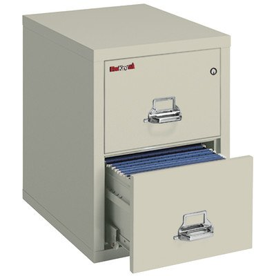 Fireproof 2-Drawer Vertical Letter File Finish: Parchment