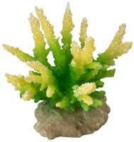 Lime-Green 9.5 x 8.5 x 10.5 cm Aqua Della Coral-Module Hydnopora Aquarium Decorations