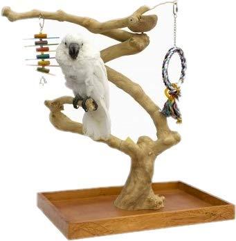 Arbol de Java para pájaros (Medium - Medidas Base: 57x37 cm ...