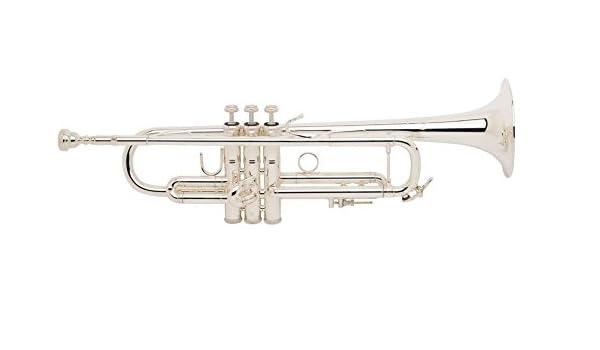 Bachmann lr180 - 72 G Stratocaster Stradivarius en B: Amazon ...