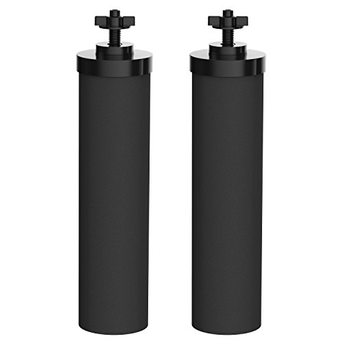 AQUACREST Water Filter, Compatible with BB9-2 Black Purification Elements (Pack of 2)