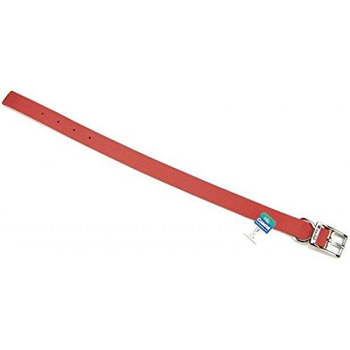 (Coastal Pet Double-Ply Nylon Dog Collar (Red, 18 Inch L x 1 Inch)