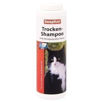Beaphar-seco de champú para gatos-150g: Amazon.es: Productos para mascotas