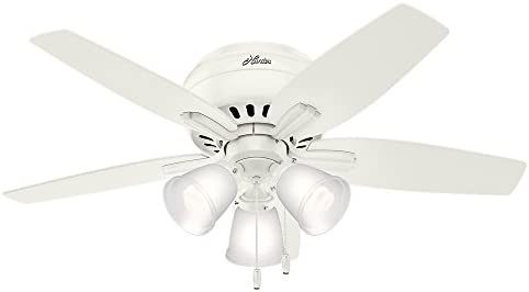 Hunter 51077 Newsome Indoor Low Profile Ceiling Fan