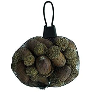 Darice Autumn Fall Decor - Bag of Small Faux Acorns 4oz/120g 30