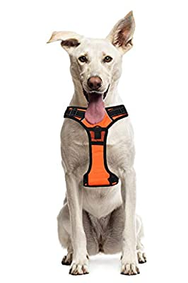 Paws Fur Life No Pull Large Dog Harness Pet Walking Reflective Oxford Padded Soft Vest for Large Dogs - Adjustable Pet Vest with Strong Metal D-Ring & Quick Snap Lockable Buckles