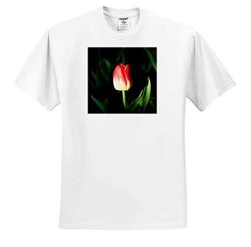 Price comparison product image 3dRose Alexis Photography - Flowers Tulip - Sunlit red and Yellow Tulip, Beautiful Green Leaves, Dark Backdrop - T-Shirts - Youth T-Shirt Med(10-12) (ts_273831_13)