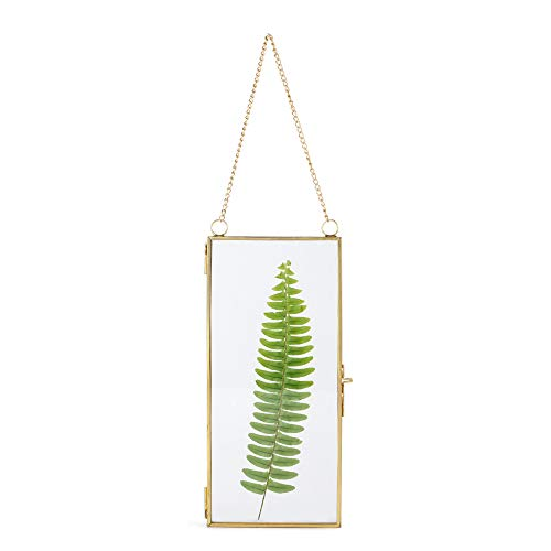 NCYP 4x9 inchs Clear Glass Picture Frame Wall Hanging Certificate Photo Plant Specimen Clip Copper Modern Home Geometric Vertical Decor Card Holder Display ()
