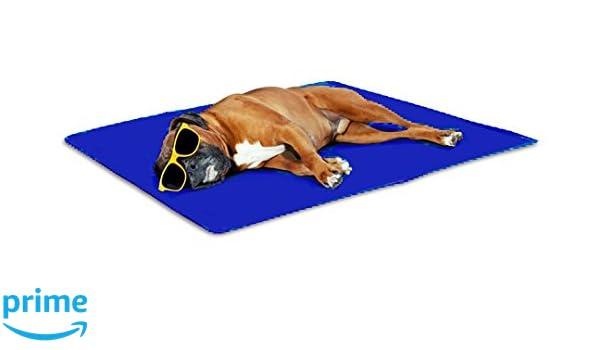San Dimas Colchoneta refrescante Pet Cool Mat (M): Amazon.es: Productos para mascotas
