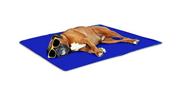 San Dimas Colchoneta refrescante Pet Cool Mat (S): Amazon.es: Productos para mascotas