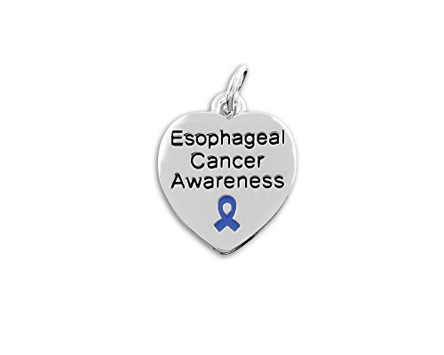 Fundraising For A Cause Esophageal Cancer Awareness Heart Charm in a Bag (1 Charm - Retail)