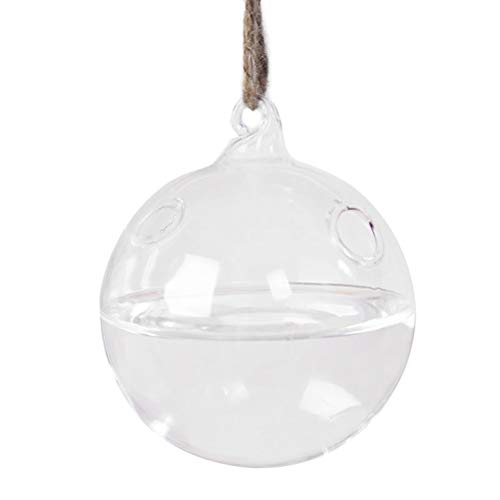 (Hole Puncher - Create Refreshing Transparent Hanging Glass Planter Terrarium Vase With Two Holes Home Decor - Variety Vase Eyelet Fabric Terrarium Puncher Diamond Blue Numbers Punchers Small Craf)