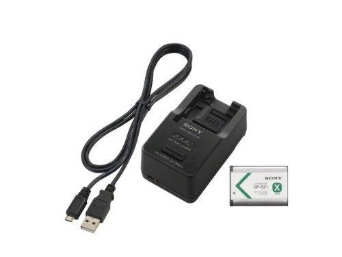 (Sony ACCTRBX  Battery Charger, Battery  and USB Cable (Black))