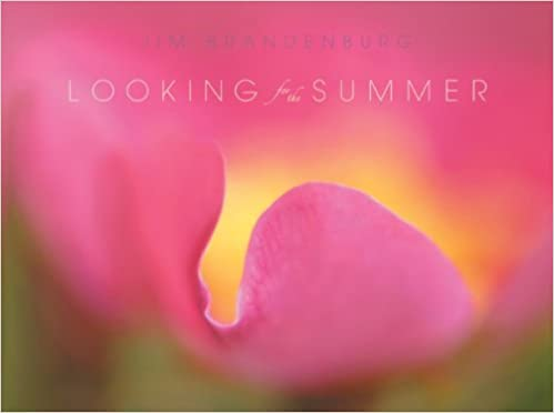 Looking for the Summer  Jim Brandenburg  Amazon.com  Books 5cde863435e