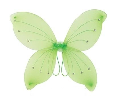 Adult Tinkerbell Wings (16