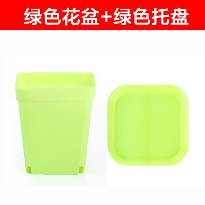 XXAICW Combinación de gran calibre plástico simple de suculenta ...
