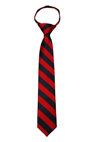 B-ZIP-JCS-ADF-1-2 - Boys Zipper Repp Stripe College Printed Necktie Ties