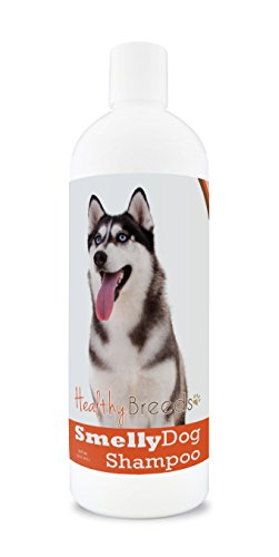 Healthy Breeds Smelly Dog Deodorizing Shampoo & Conditioner with Baking Soda for Siberian Husky - Over 200 Breeds - 8 oz - Hypoallergenic for Sensitive Skin