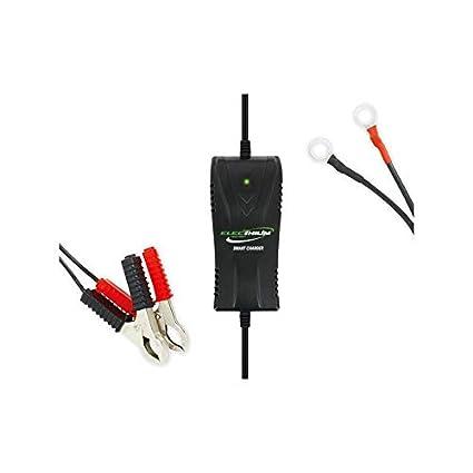 Cargador Batería para Moto y Scooter - para batería Litio + ...