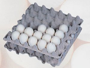 140 Egg Flats - Each Holds 30 Eggs
