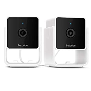 Flashandfocus.com 31TKnCL5hjL._SS300_ Petcube [New 2020] Cam Pet Monitoring Camera with Built-in Vet Chat for Cats & Dogs, Security Camera with 1080p HD Video…