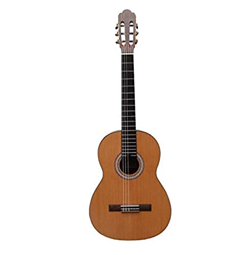 Prodipe Primera EQ - Guitarra clásica eléctrica 4/4: Amazon.es ...