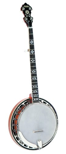Recording King RK-R20E Songster Resonator with Pickup