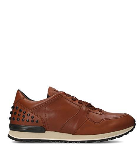 Tod's Xxm0xh0r011dvrs018 Sneakers Uomo Marrone Pelle vUEvfxrwqW