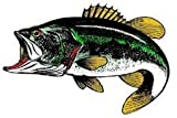 Green Bass Fish Magnet