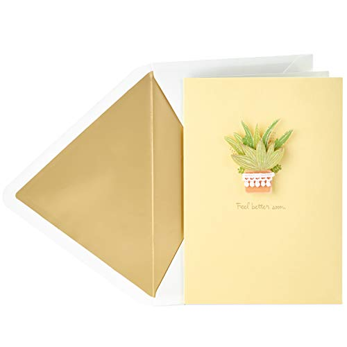 Get Well Wishes Cards (Hallmark Signature Get Well Card (Plant))