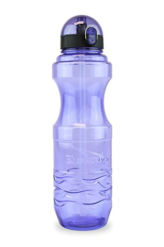 Bluewave Bullet BPA Free Reusable Sports Water Bottle with Straw – 1 Liter (34 oz) Iris Purple (Gen2)