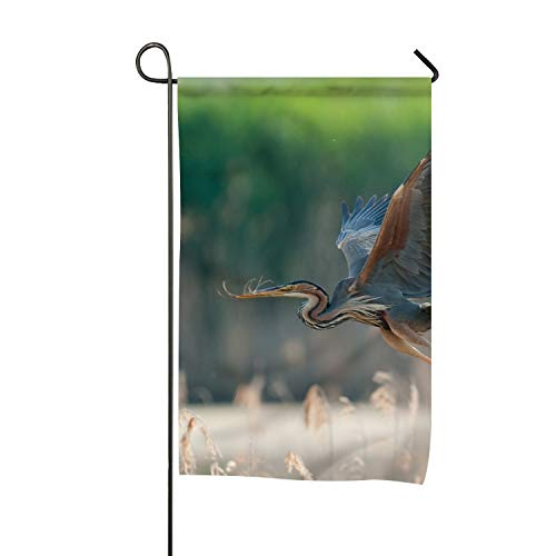 Delia Bartholomew Animal Blue Heron Birds Garden Flag Vertical Double Sided Spring Summer Yard Outdoor Decorative 16 x 30 Inch