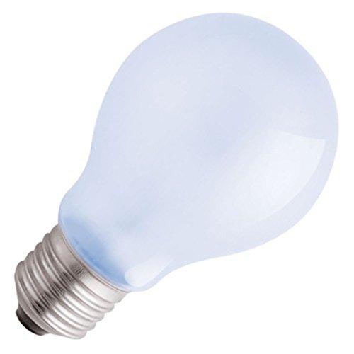 2498 Standard Daylight Full Spectrum Light Bulb ()