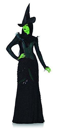 Deluxe Defying Gravity Elphaba Adult Costume - (Elphaba Costumes)
