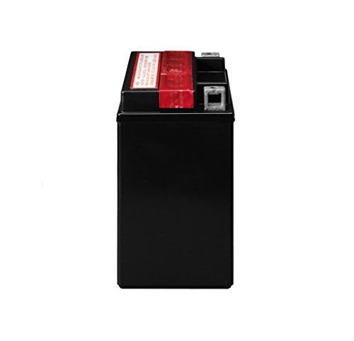 ACDelco ATX14BS Specialty AGM Powersports JIS 14-BS Battery by ACDelco (Image #2)