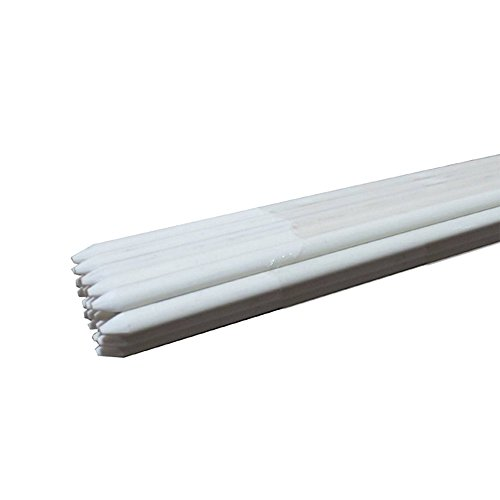 Rust-free Garden Plant Stakes Post for Tomatoes, Trees, Cucumber, Fences, Beans, 5-Feet, 5/16-Inch 20 Pack White by Mr Garden