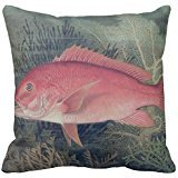Red Snapper From Game Fishes Of The United State Pillow Case (Snapper Sofa)