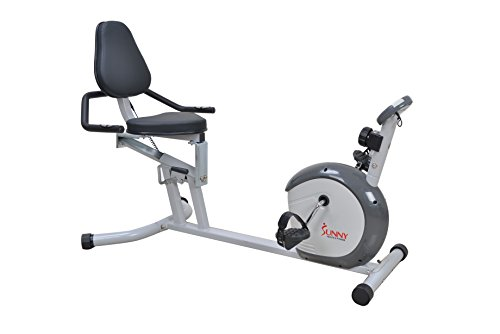 Sunny Health & Fitness Magnetic Recumbent Bike Exercise Bike, 300lb Capacity, Easy Adjustable Seat, Monitor, Pulse Rate Monitoring - SF-RB4601