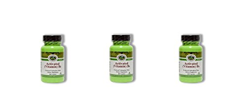 Daily Manufacturing -Activated Vitamin B6 |100 Veggie Capsules, 3 Pack by Daily Manufacturing